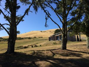 Djerassi_middlebrooks